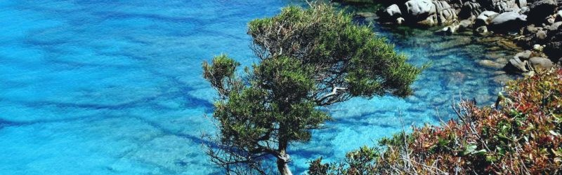 Sardinien; Capo Testa;