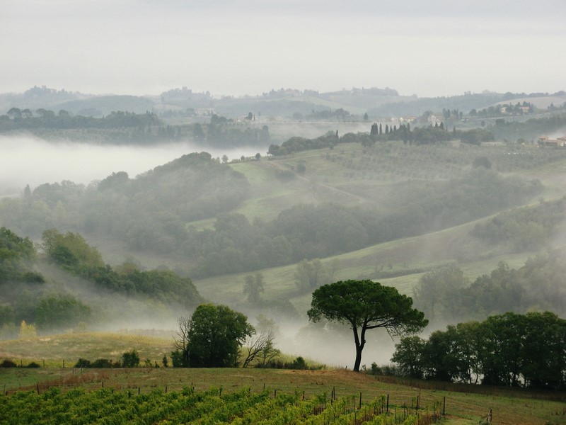 Wanderung Toscana 12